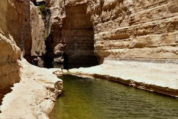 טיול קיץ בהר הנגב – המקום הכי COOL במדבר!